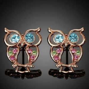 Jewelry - New Rose Gold Owl Earrings